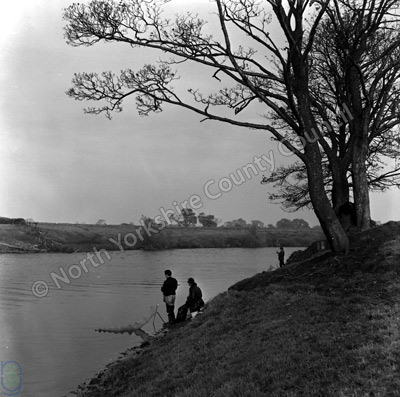 Fishing, River Ure, Lower Dunsforth